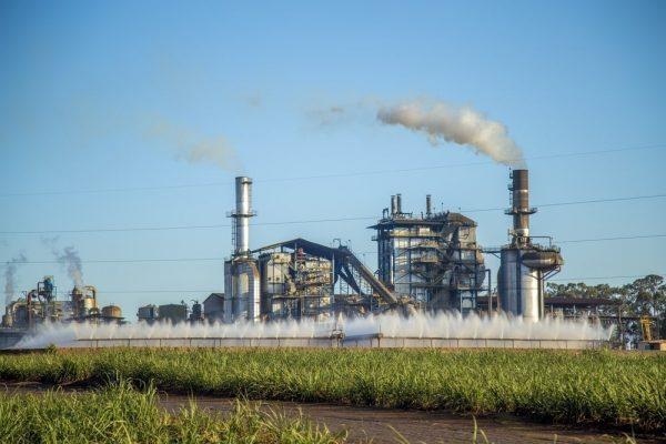 Zuckerindustrie: Wartung und Instandsetzung ohne Produktionsstopp